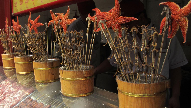 China-Beijing-Scorpions