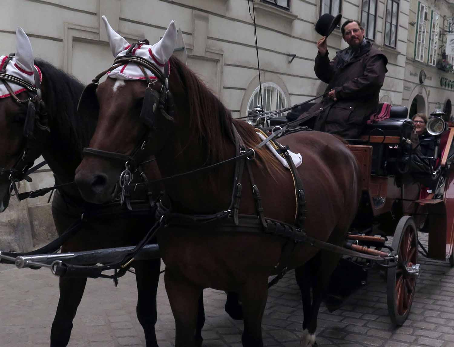 Austria-Vienna-Horses-And-Carriage