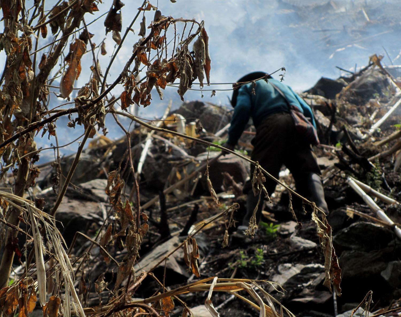 Peru-Salkantay-Trek-Day5-Clear-Cutting