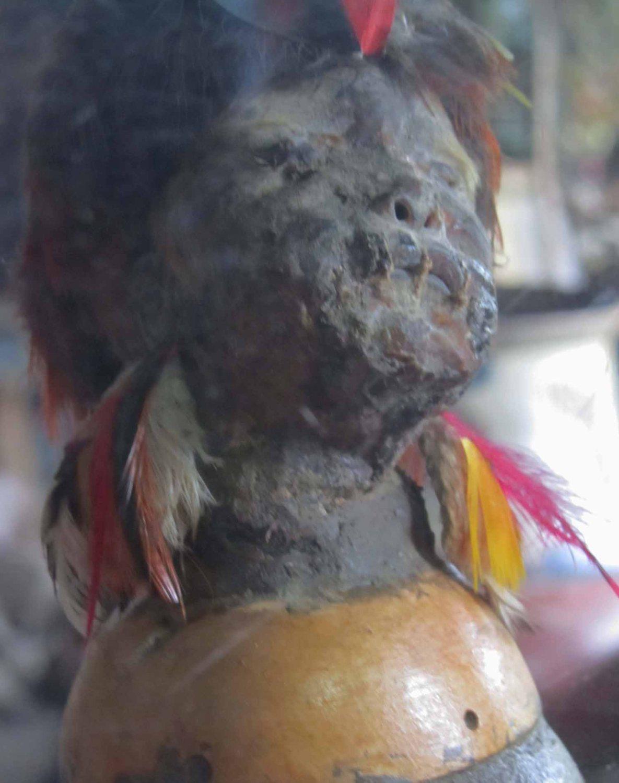 Amazon-Shrunken-Head