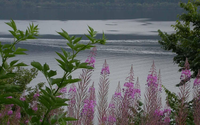 Scotland-Highlands-Loch-Ness-Nessie