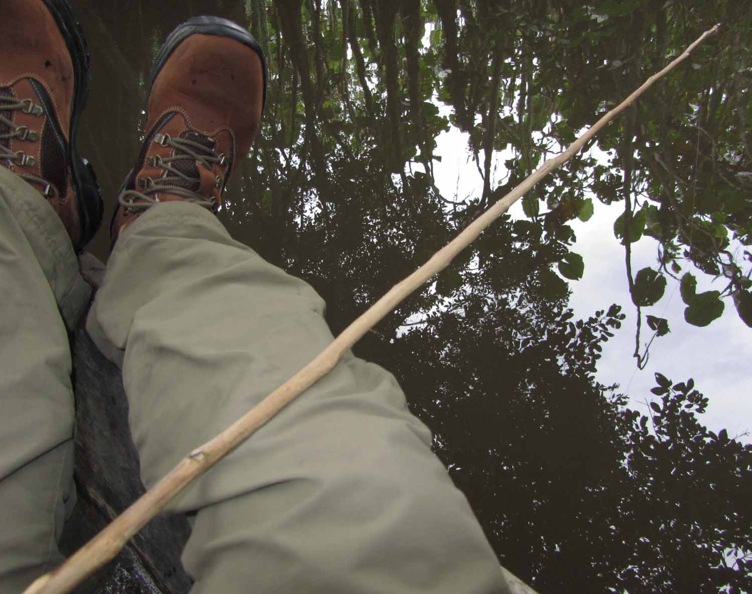 Amazon-Pirana-Fishing