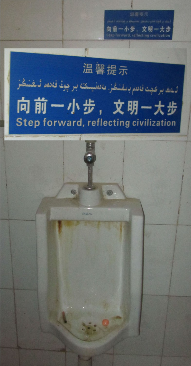 China-Urumqi-Toilet