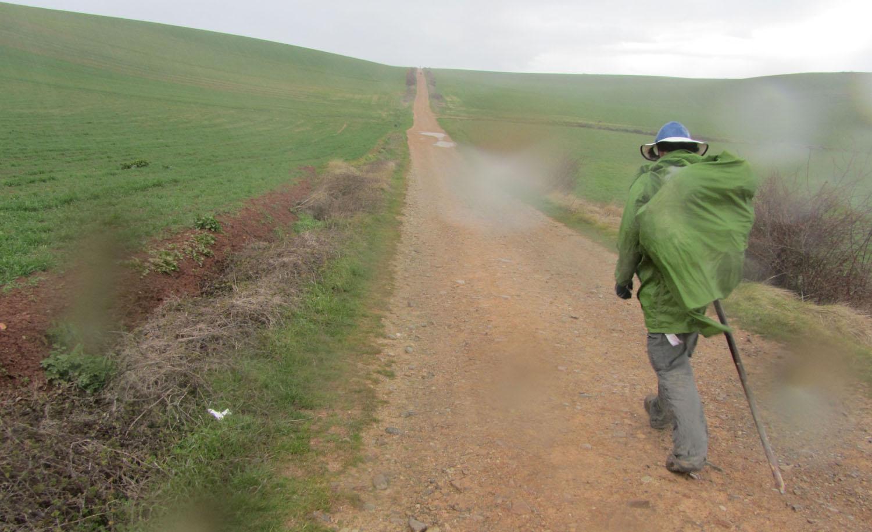 Camino-De-Santiago-Sights-And-Scenery-Rain