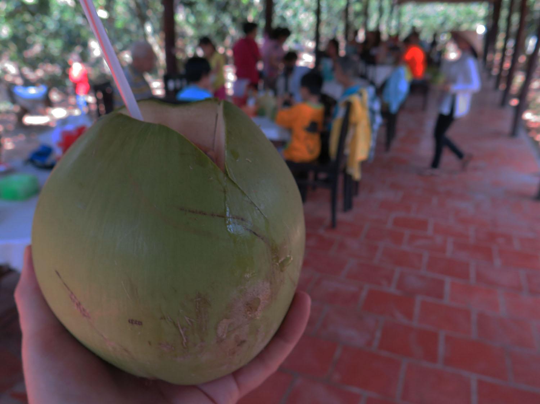 Vietnam-Mekong-Delta-Food-And-Drink-Coconut