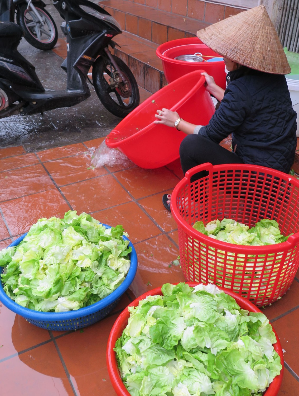 Vietnam-Hanoi-Street-Scenes-Lettuce