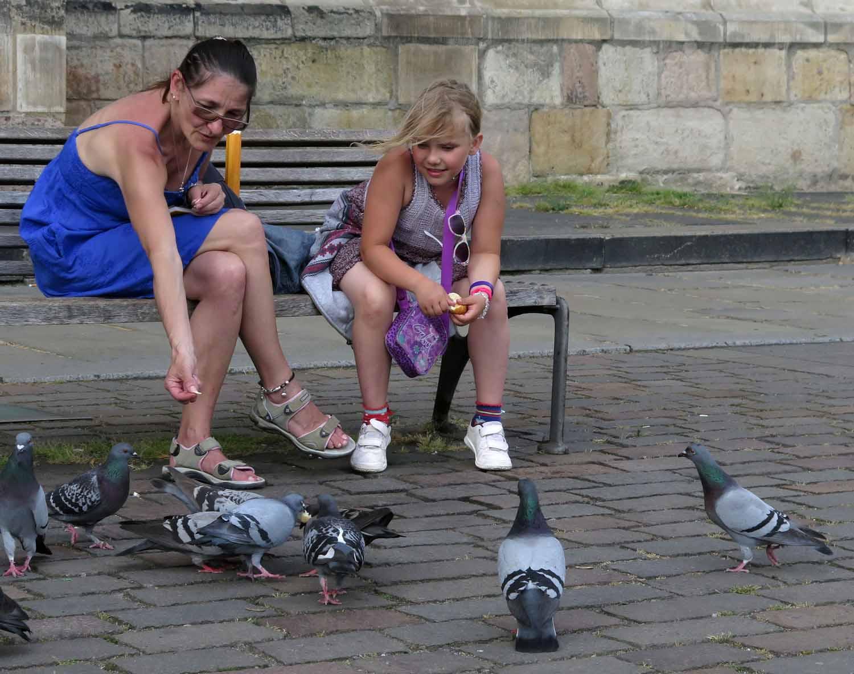 czech-republic-plzen-ladies-feeding-the-pigeons