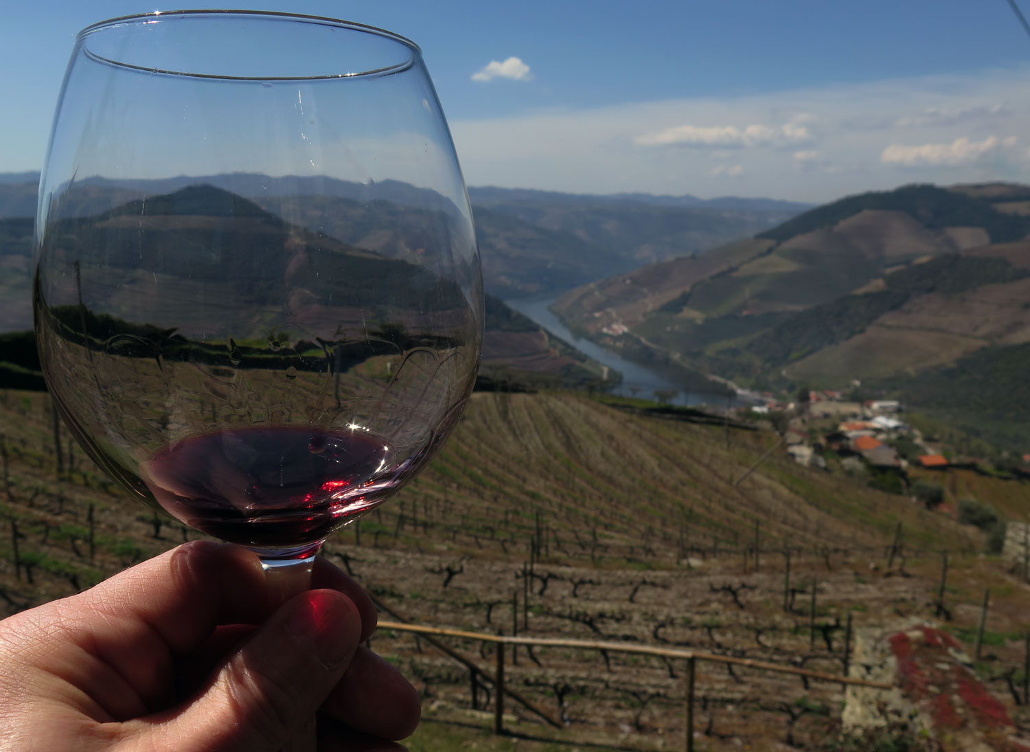 portugal-douro-valley-wine-tour-toast