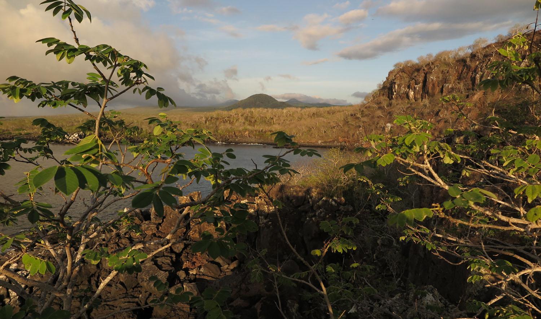 Ecuador-Galapagos-Scenery-Darwin-Bay
