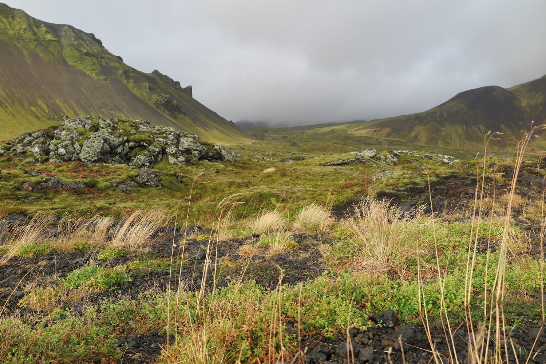 Iceland-Terrain-Valley