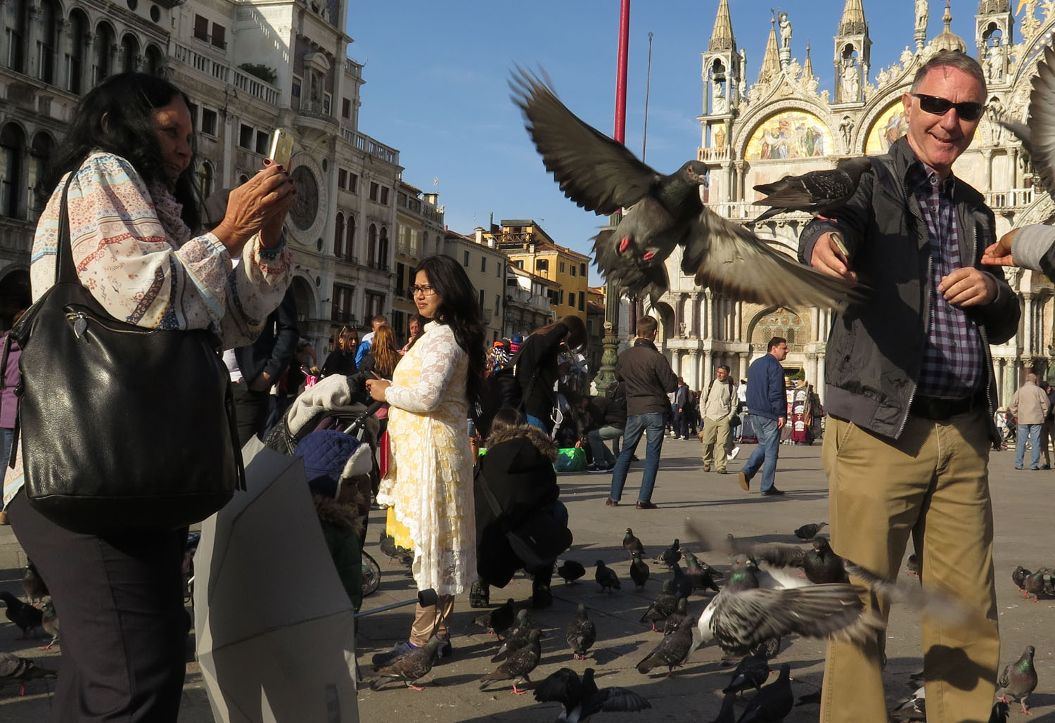 Italy-Venice-Saint-Marks-Square-Pigeons
