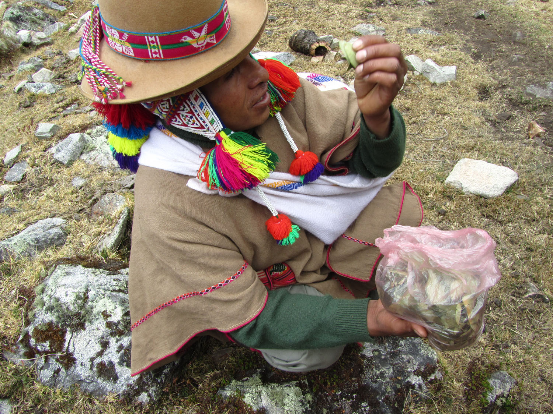 Peru-Salkantay-Trek-Day2-Santos-Coca