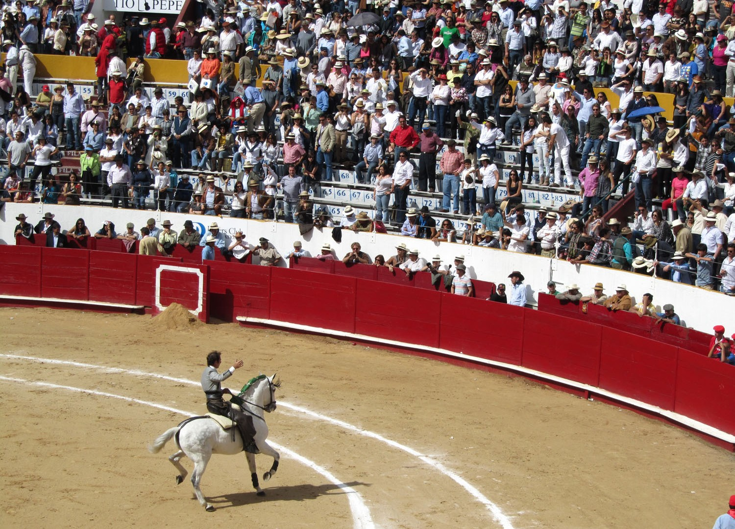 Ecuador-Quito-Bullfight-Matador-On-Horseback