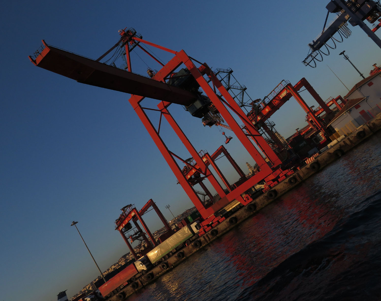 Turkey-Bosphorus-Cranes