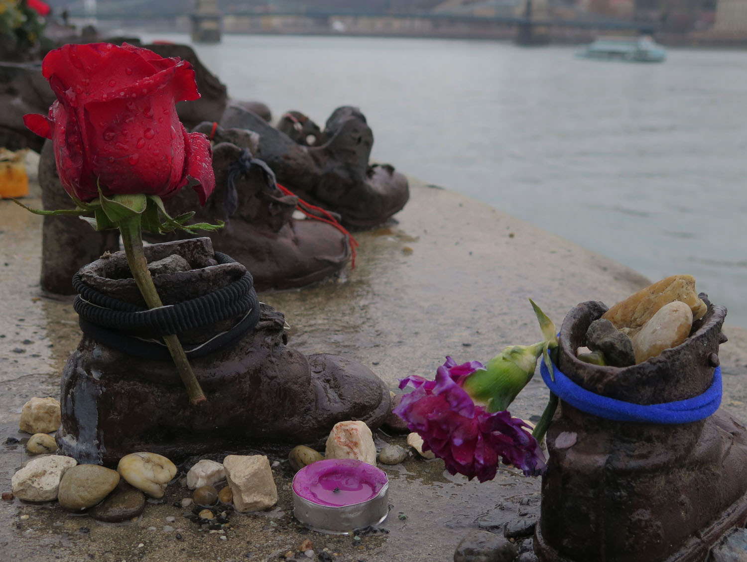 Hungary-Budapest-Shoes-On-The-Danube-Flowers