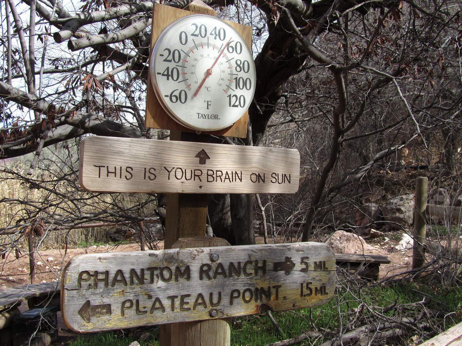 Grand-Canyon-Hike-In-Indian-Gardens-Thermometer