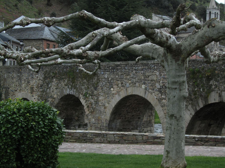 Camino-De-Santiago-Sights-And-Scenery-Molinaseca-Bridge-Trees