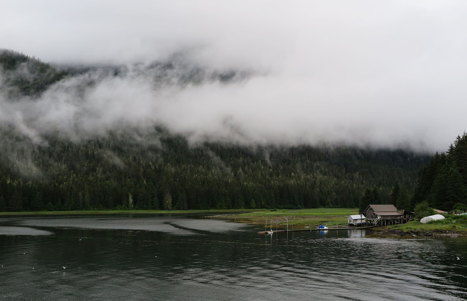 Alaska-State-Ferry-Inside-Passage-Scenery-Boat-House