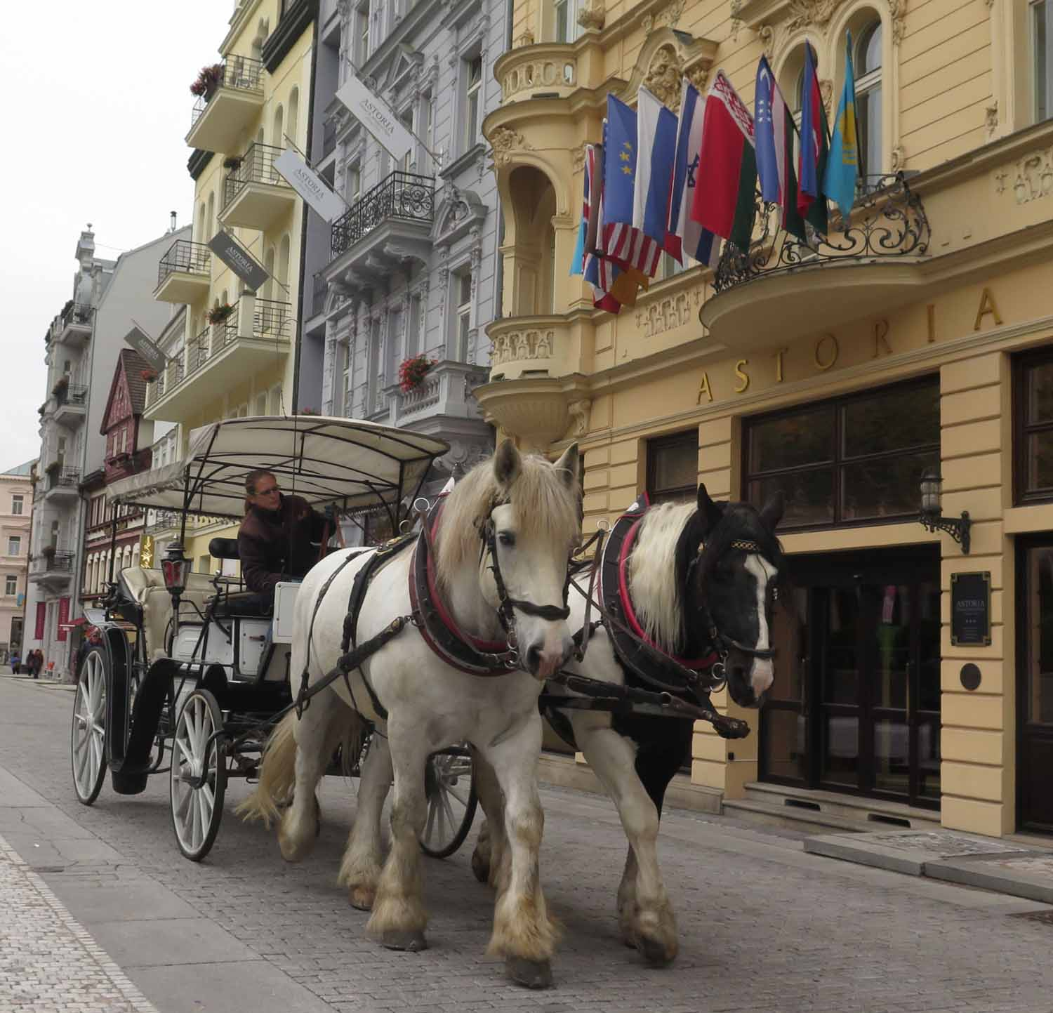 Czech-Republic-Karlovy-Vary-Horses-And-Carriage