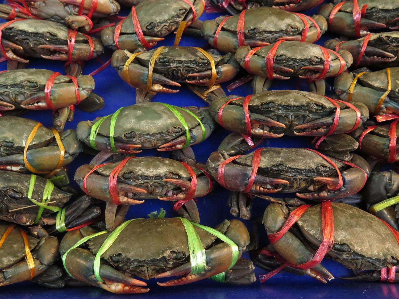 Thailand-Bangkok-Street-Scenes-Crabs