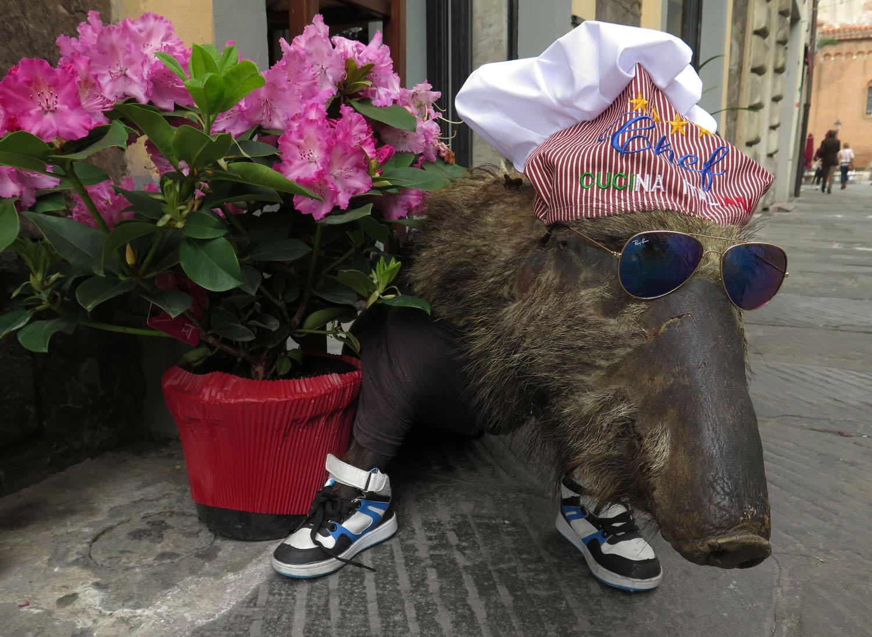 Italy-Pisa-Street-Scenes-Wild-Boar