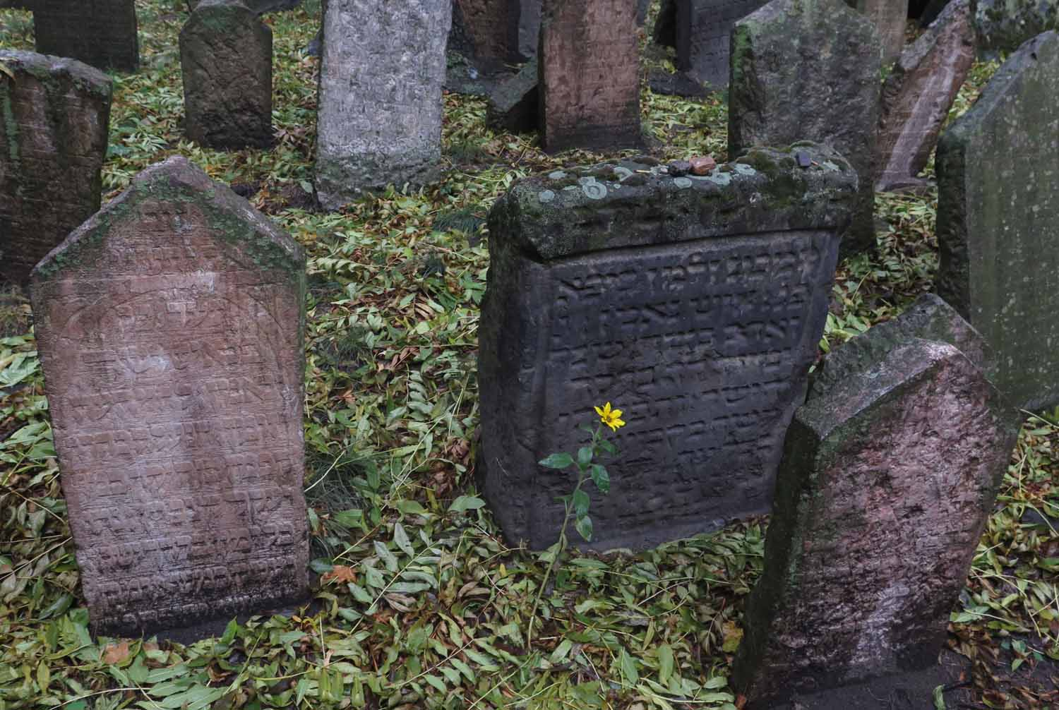Czech-Republic-Prague-Old-Jewish-Cemetery