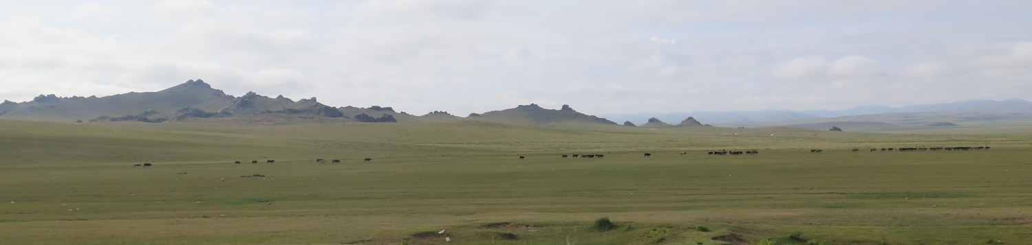 Mongolia-On-The-Road-Landscape