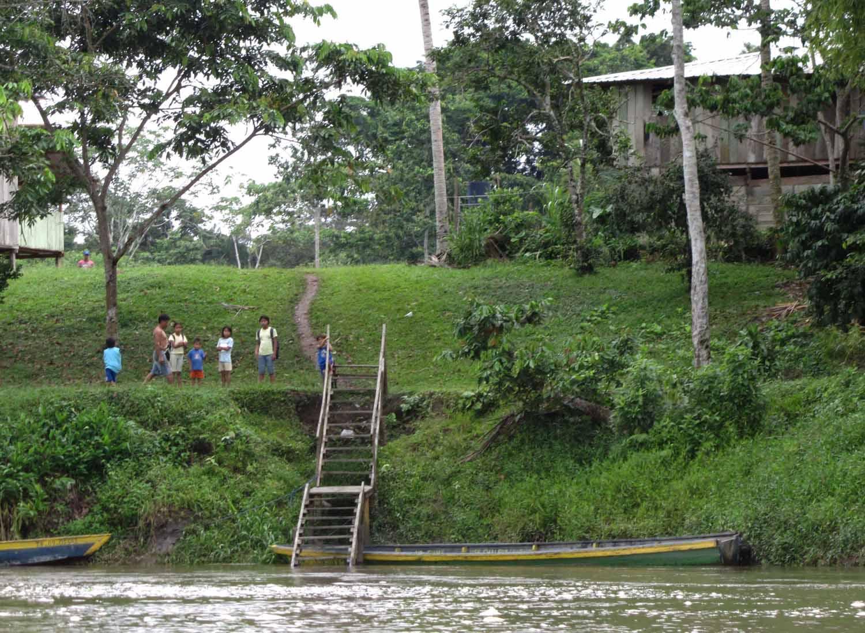 Amazon-Neighbors