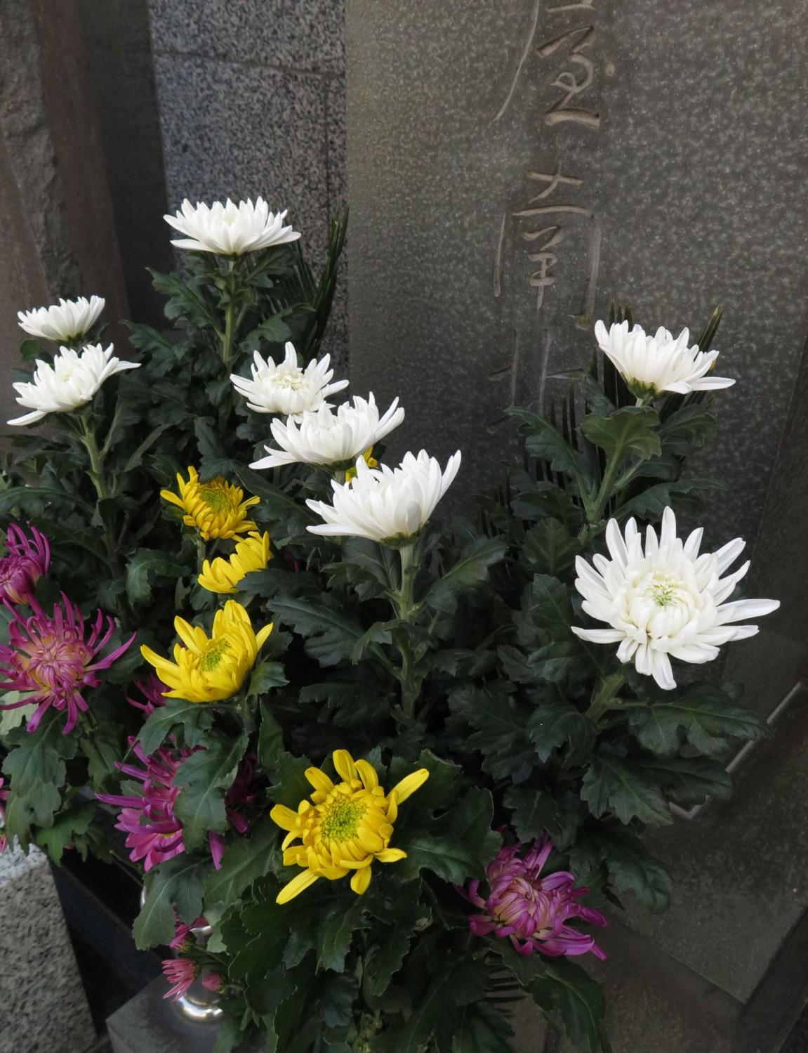 Japan-Tokyo-Street-Scenes-Shrine