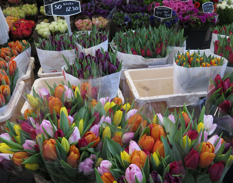 Netherlands-Amsterdam-Street-Scenes-Tulips