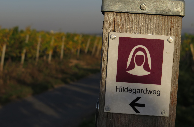 Germany-Rhine-River-Valley-Rudesheim-Hildegardweg