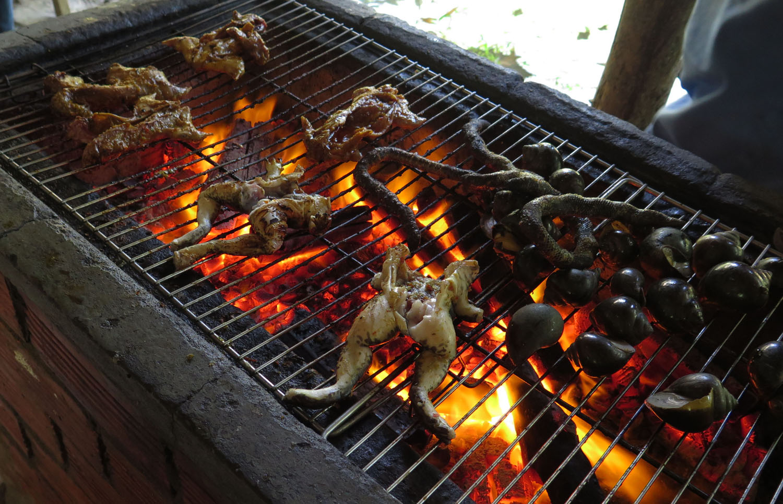 Vietnam-Mekong-Delta-Food-And-Drink-Snail-Frog-Snake