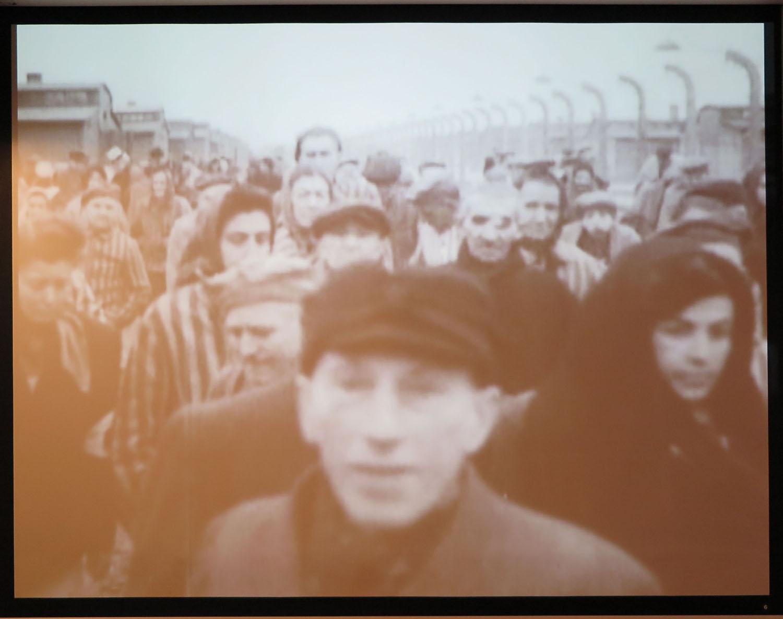 Poland-Auschwitz-Liberation