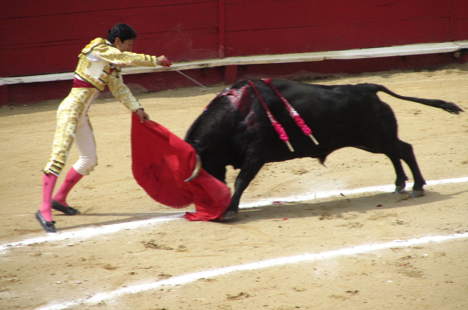 Ecuador-Quito-Bullfight-Death-Blow