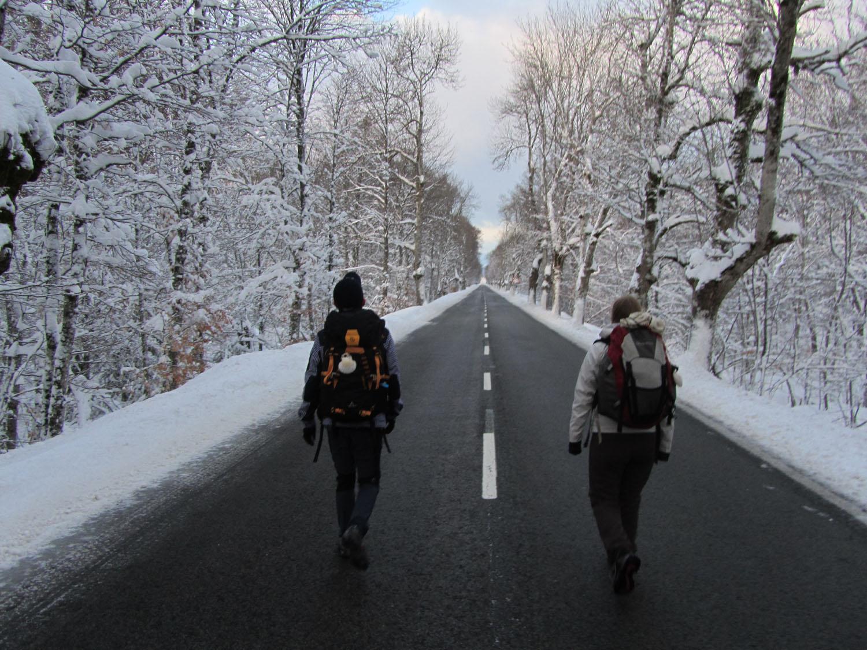 Camino-De-Santiago-Sights-And-Scenery-Roncevalles-Road