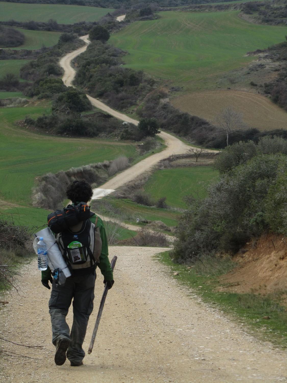 Camino-De-Santiago-Sights-And-Scenery-Path