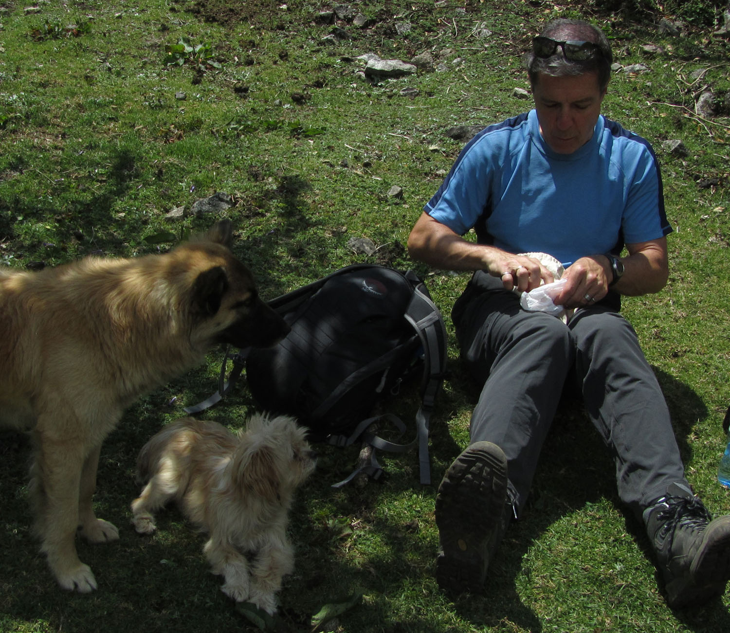 Peru-Salkantay-Trek-Day4-Ron-Dogs