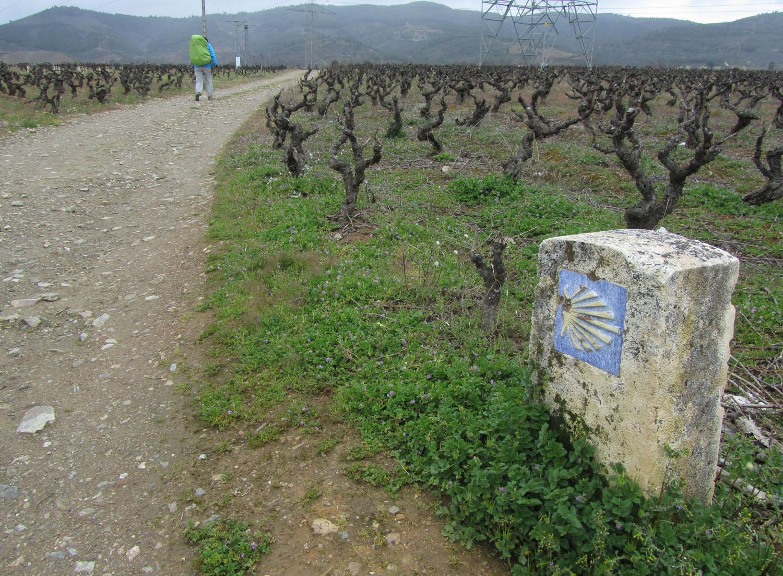 Camino-De-Santiago-Waymarkers-Milestones