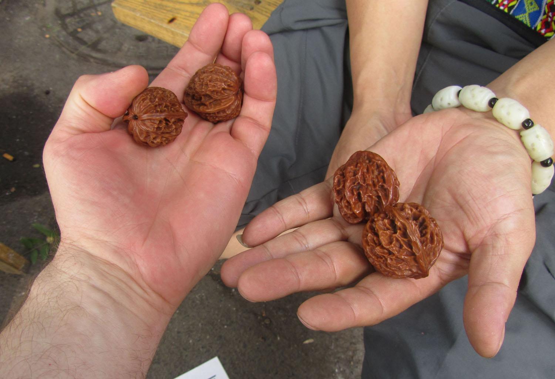 China-Xian-Walnuts