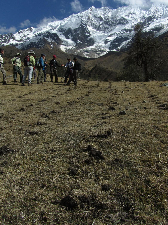 Peru-Salkantay-Trek-Day2-Potatoes