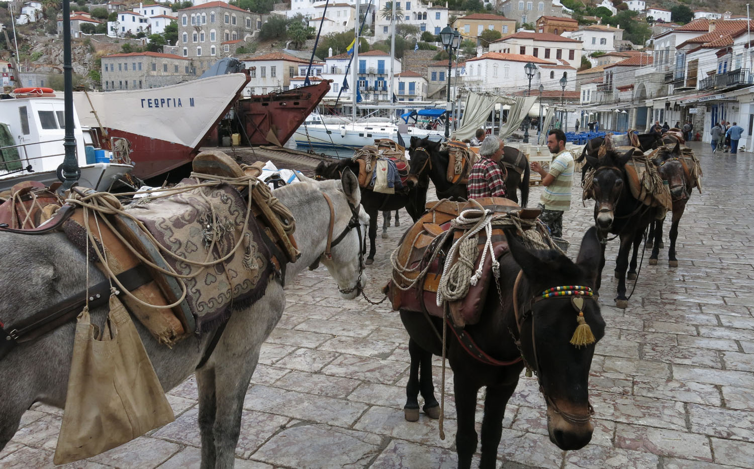 Greece-Hydra-Donkeys
