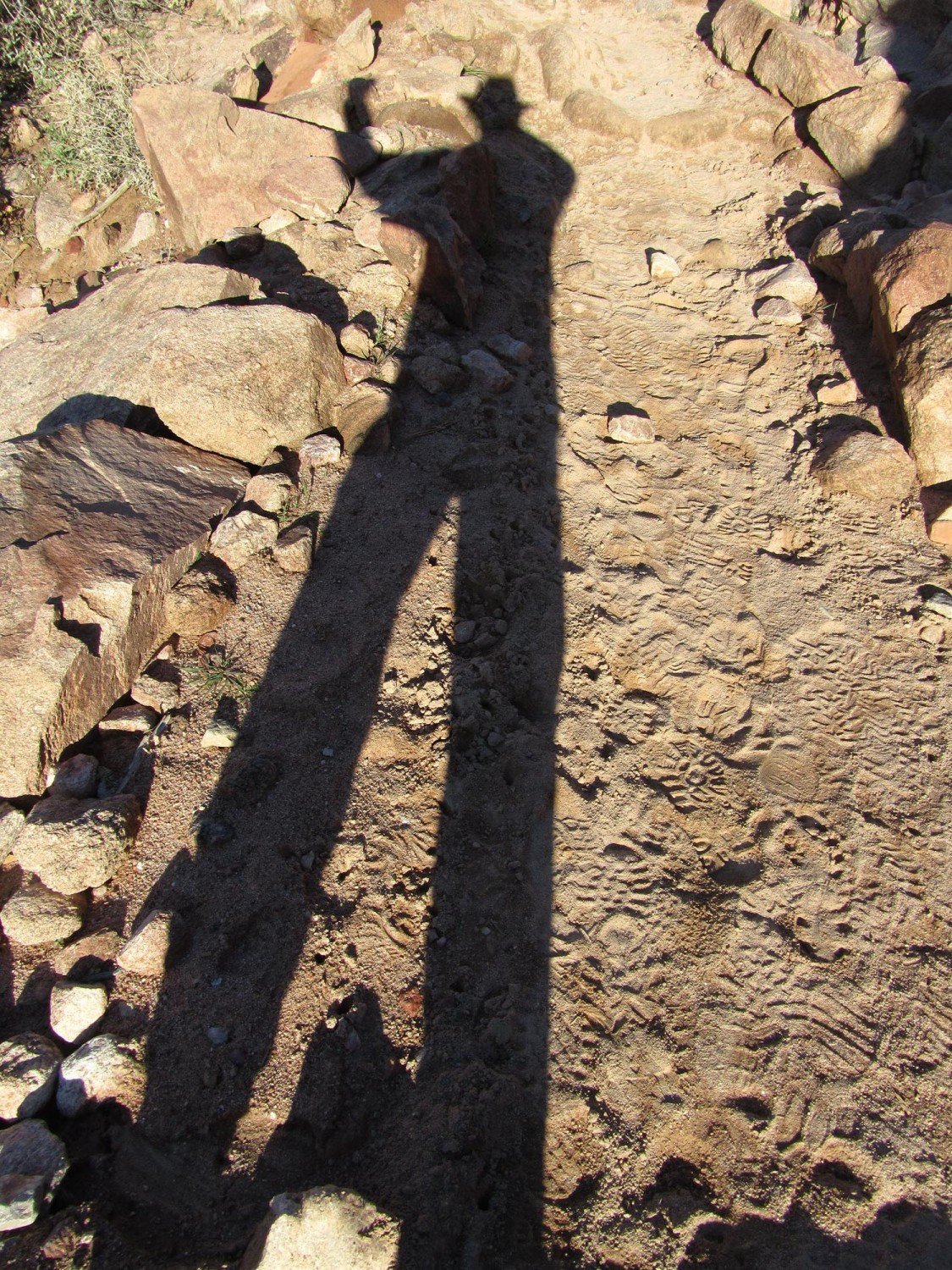 Grand-Canyon-River-Trail-Shadow