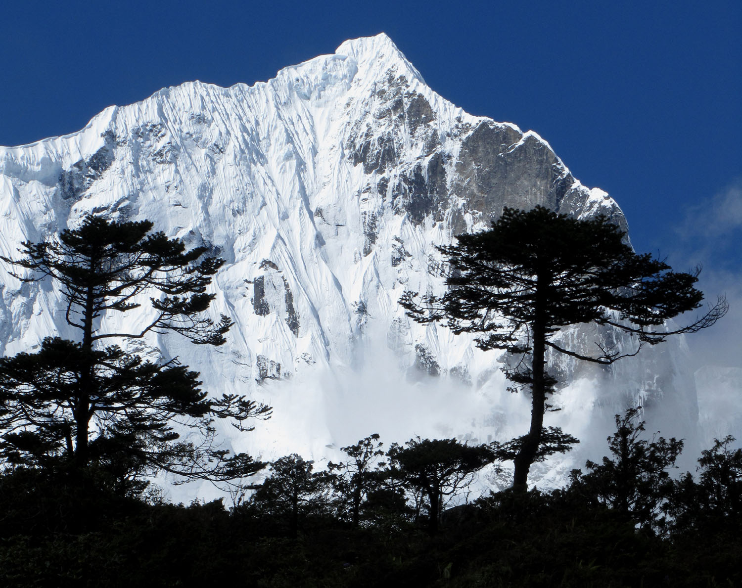 Nepal-Everest-Region-Trek-Day-07-Thame-Trees-Silhouette