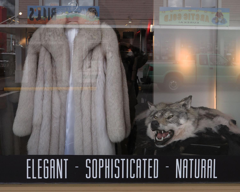 Alaska-Ketchikan-Fur