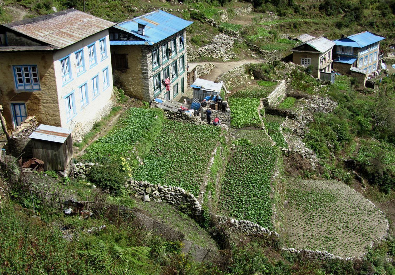 Nepal-Everest-Region-Trek-Day-03-Namche-Terraces