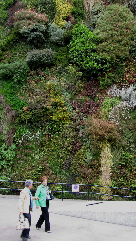 Spain-Madrid-Wall-Of-Flowers