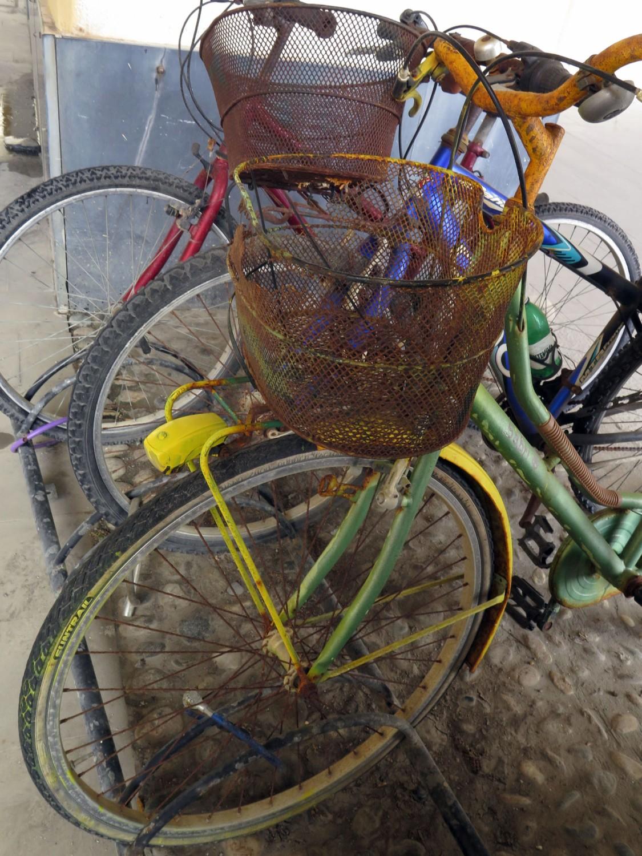 Italy-Cinque-Terre-Street-Scenes-Bicyles