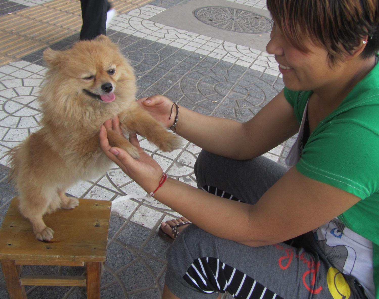 China-Xian-Lady-And-Dog
