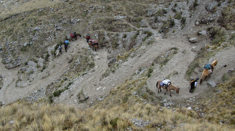 Peru-Salkantay-Trek-Day3-Switchbacks