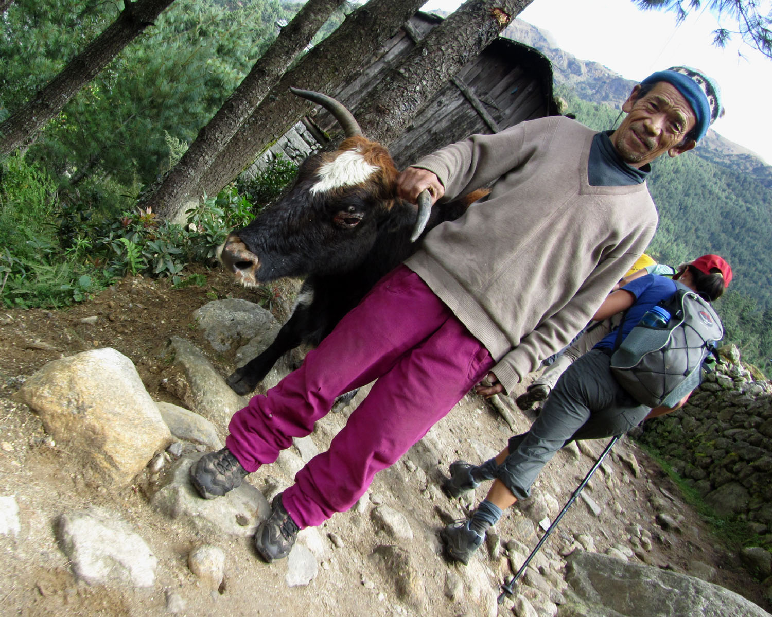 Nepal-Everest-Region-Trek-Day-02-Beasts-Of-Burden